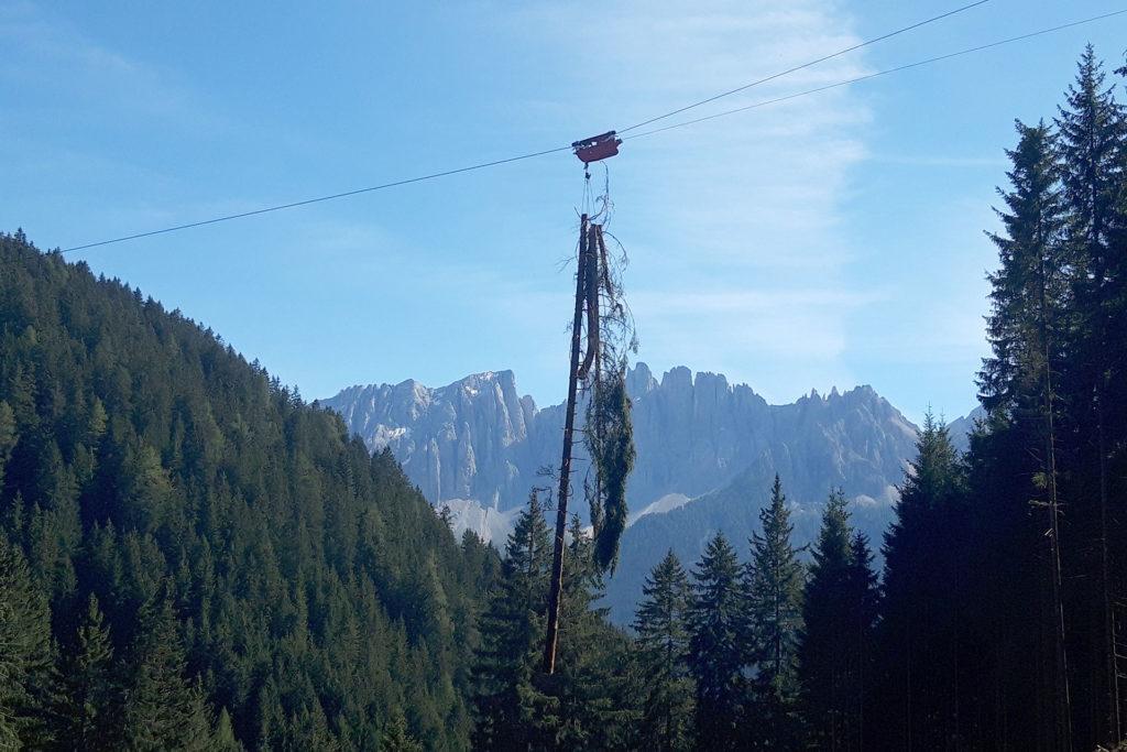 Ilmer Stefan - Holzbringung mittels Langstreckenbahn