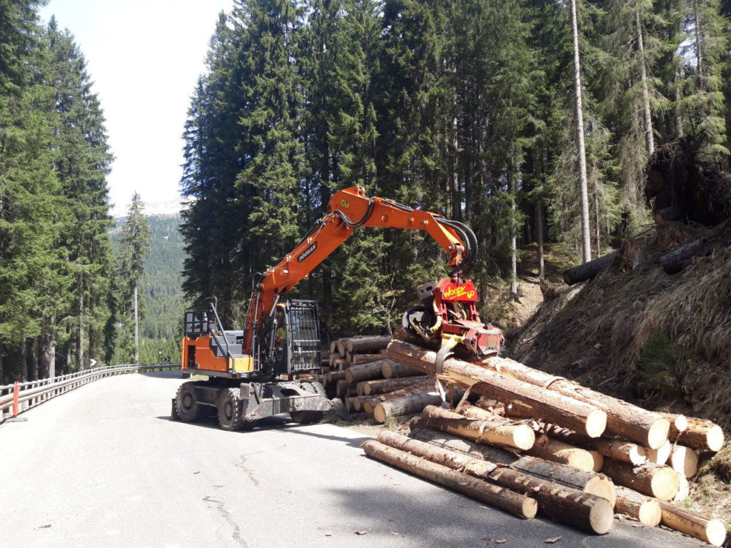 Forstunternehmen Ilmer Stefan - Windwurfaufarbeitung